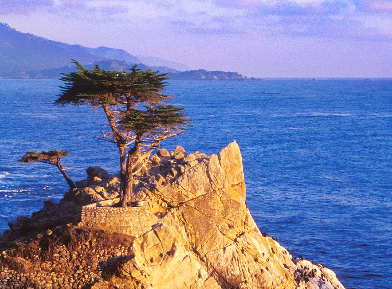 Carmel coastline with twisted cypress on rock over ocean in foreground